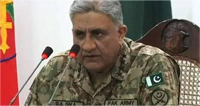 پاکستان نیوی سمندری حدود کے دفاع سے متعلق قوم کی امنگوں پر ہمیشہ پوری اتری ہے، آرمی چیف