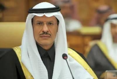 سعودی عرب جلد کم لاگت میں بجلی پیدا کرنے کا منصوبہ شروع کرے گا۔ شہزادہ عبدالعزیز بن سلمان