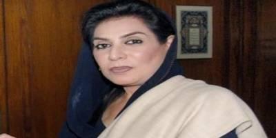 مشترکہ مفادات کونسل میں جعلی رپورٹ جمع کرانے کا الزام بے بنیاد،فہمیدہ مراز کا سعید غنی کو خط