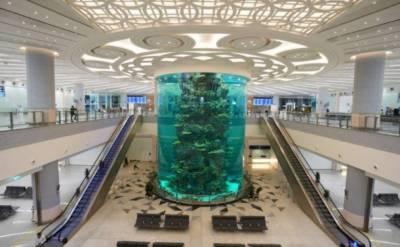 سعودی عرب میں دنیا کا سب سے بڑا مچھلی گھر تیار