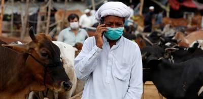محکمہ داخلہ سندھ نے عید الاضحیٰ سے متعلق ایس او پیز جاری کر دیے