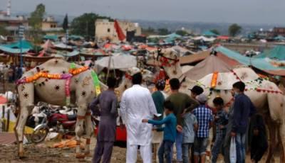 ملک بھر میں عیدالاضحی کی تیاریاں عروج پر پہنچ گئیں
