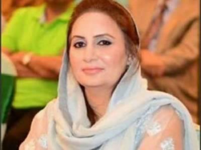 پاکستان نے مقبوضہ کشمیر کے حوالے سے اپنا عزم اور موقف پاکستان کے سیاسی نقشے میں نمایاں کر دیا ۔ مسرت جمشید چیمہ