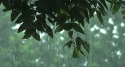 ملک کے مختلف حصوں میں بارش کاامکان