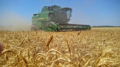 موثر اقدامات کے باعث صوبے میں گندم ،آٹے کی قیمتیں مستحکم ہوئی ہیں، وزیراعلیٰ پنجاب