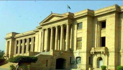سندھ ہائیکورٹ نے صوبے میں بلدیاتی انتخابات سے متعلق الیکشن کمیشن سے جواب طلب کرلیا۔