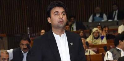 اپوزیشن کی وجہ سے پاکستان گرے لسٹ میں ہے: مراد سعید