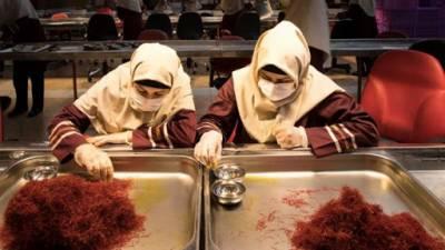 ایران دنیا کو 94 فیصد زعفران برآمد کرنے والا ملک بن گیا