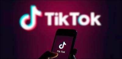 ن لیگی رہنما کا ''ٹک ٹاک''پر سے پابندی ہٹانے کا مطالبہ