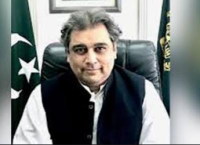 مولانا فضل الرحمان غلط فہمی میں جی رہے ہیں، علی زیدی