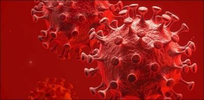کرونا وبا: 24 گھنٹوں میں ساڑھے 6 ہزار افراد ہلاک