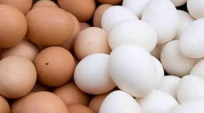 کراچی:موسم سرما شروع ہوتے ہی انڈوں کی قیمت میں ہوشربا اضافہ