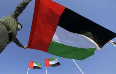 یو اے ای پرچم کی توہین پر 5 لاکھ درہم جرمانہ ،25 سال قید