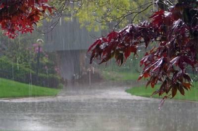 لاہور،فیصل آباد میں موسم سرما کی پہلی بارش ، اسموگ میں کمی