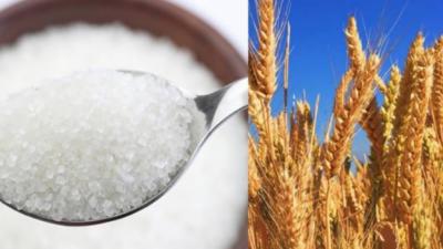 اوپن مارکیٹ میں گندم اور چینی کی قیمت میں اضافہ