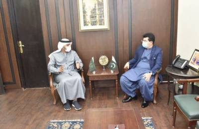 چیئرمین سینیٹ سے متحدہ عرب امارات کے سفیر حماد عبید ابراہیم سالم الزا بی کی ملاقات