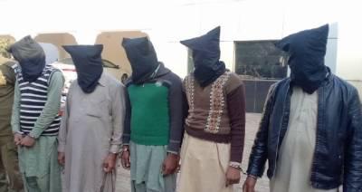 چنیوٹ: پولیس کی بڑی کارروائی، ڈکیت گینگ گرفتار