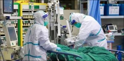 سال کے آخری 24 گھنٹوں میں مزید 71 کرونا مریض انتقال کرگئے