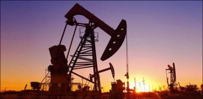 کویت میں تیل کے نئے ذخائر دریافت