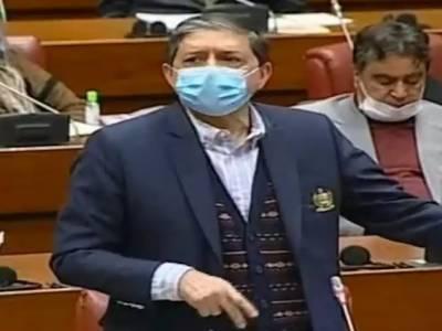 جس ملک میں پارلیمنٹ ڈر جائے ، عام آدمی تو کہیں کا نہیں رہے گا۔ ڈپٹی چیئرمین سینیٹ
