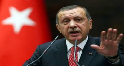 ترک صدر کا نئے آئین کا عندیہ