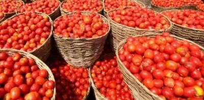 """من مانی قیمتوں پر فروخت ہونے والا """"ٹماٹر"""" فری میں تقسیم ہونے لگا"""