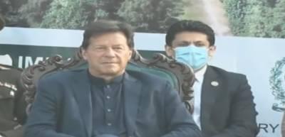 سینیٹ الیکشن میں سیاستدانوں کو خریدنے کے لیے منڈی لگی ہوئی ہے:وزیراعظم عمران خان