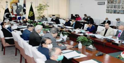کابینہ اقتصادی رابطہ کمیٹی کی نیلم جہلم سرچارج فوری طور پر ختم کرنے کی منظوری