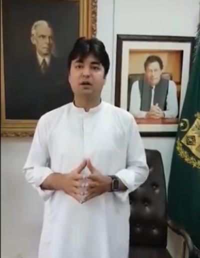 ن لیگ کے سیاسی ہتھکنڈے ہرصورت ناکام ہوں گے: مراد سعید