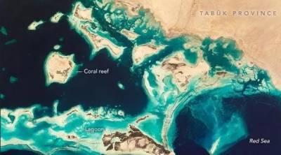 سعودی عرب کے شمال مغربی ساحلی جزائر کی خلا سے لی تصاویر جاری