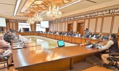 وفاقی کابینہ نے تحریک لبیک پاکستان پر پابندی کی منظوری دیدی