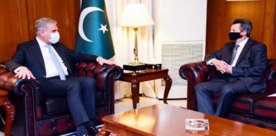 پاکستان ہنگری کے ساتھ تعلقات کو انتہائی اہمیت دیتا ہے: وزیر خارجہ شاہ محمود قریشی