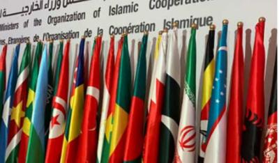 او آئی سی نے اسرائیل کے خلاف مذمتی قرارداد منظور کر لی