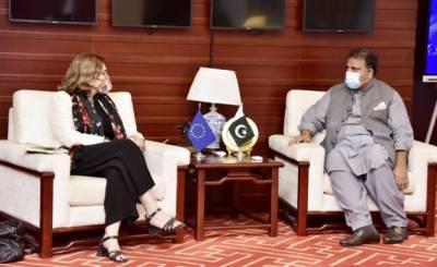 وفاقی وزیر نے یورپی یونین کی سفیر سے ملاقات