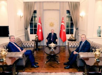 ترکی مظلوم فلسطینیوں کے حقوق کیلئے پاکستان کی کوششوں کا معترف ہے:رجب طیب اردوان