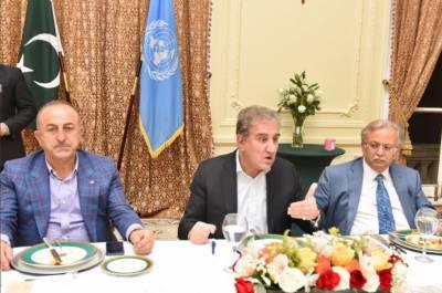 شاہ محمود قریشی کا وزرائے خارجہ کے اعزاز میں عشائیہ