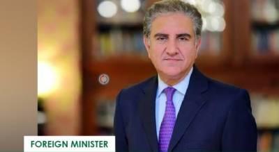 بھارت کو نہ چاہتے ہوئے بھی مقبوضہ کشمیر کی خصوصی حیثیت بحال کرنا ہوگی۔وزیر خارجہ