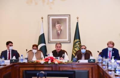 پاکستان نے ترقی پذیر ممالک کو ویکسین کی فراہمی کیلئے آواز اٹھائی ہے.وزیرخارجہ شاہ محمود قریشی