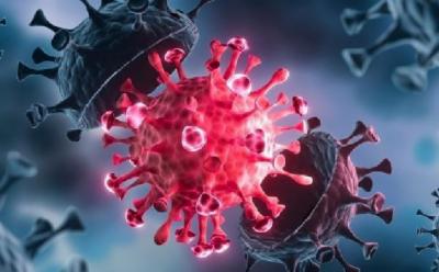 کورونا کی ڈیلٹا قسم کمزور افراد کے لیے بہت زیادہ خطرناک: عالمی ادارہ صحت