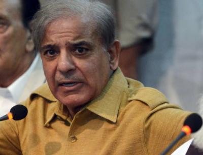 قائد حزب اختلاف شہباز شریف نے اوور سیز پاکستانیوں کے حق نمائندگی کا نیا فارمولا پیش کر دیا