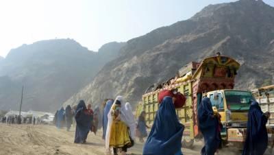 پاکستان میں نئے افغان پناہ گزینوں کی آمد کا فی الحال کوئی امکان نہیں ہے۔سلیم خان