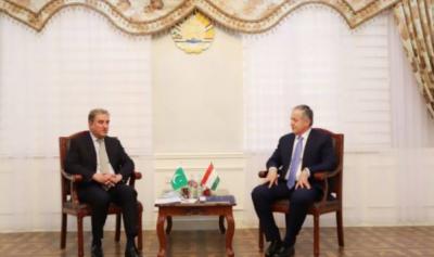 پاکستان پرامن، مستحکم اور خوشحال افغانستان کیلئے کوشاں رہے گا: وزیر خارجہ شاہ محمود قریشی