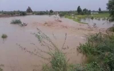 ڈیرہ اسماعیل خان:دریائے لونی میں اونچے درجے کا سیلاب