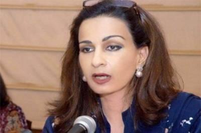 آزاد کشمیر انتخابات میں منظم طریقے سے دھاندلی ہو رہی ہے: شیری رحمان کا الزام