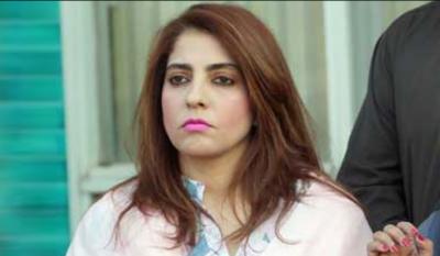 کچھ سیاسی گداگر سندھ میں اقتدار میں آنے کے خواب دیکھ رہے ہیں، سینیٹر پلوشہ خان