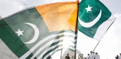 22کروڑ پاکستانی کشمیریوں کیساتھ ، 5اگست کو یوم استحصال منایا جائے گا