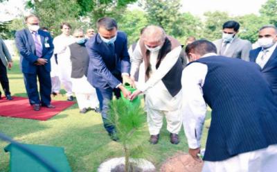اٹلی کے وزیر خارجہ لیوگی دے مایو کی وفد کے ہمراہ وزارتِ خارجہ کا دورہ ، شاہ محمود کے ہمراہ یادگاری پودا لگایا