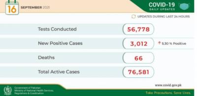 24 گھنٹوں کے دوران 56 ہزار 778 کورونا ٹیسٹ کئے گئے ہیں: وزارت قومی صحت