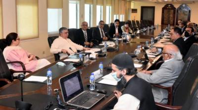 کامیاب پاکستان پروگرام کے ڈھانچے کو حتمی شکل دی گئی: وزیر خزانہ شوکت ترین