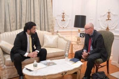 شہریار آفریدی کی اقوام متحدہ کے ہیومن رائٹس واچ کے ڈائریکٹر سے ملاقات، مقبوضہ کشمیر پر ڈوزیئر پیش